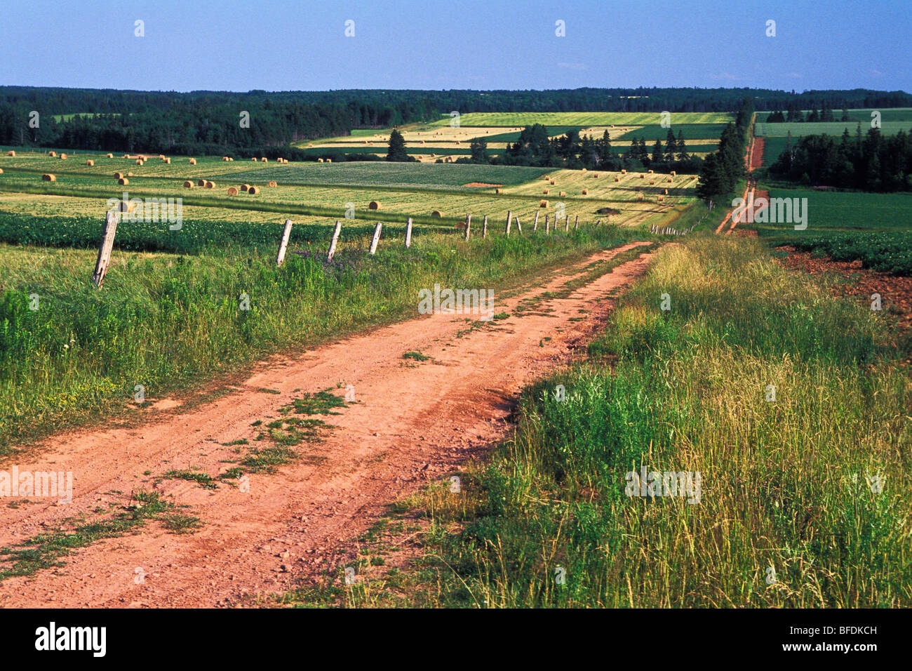 Rural, dirt road in the countryside, Kinkora, Prince Edward Island, Canada - Stock Image