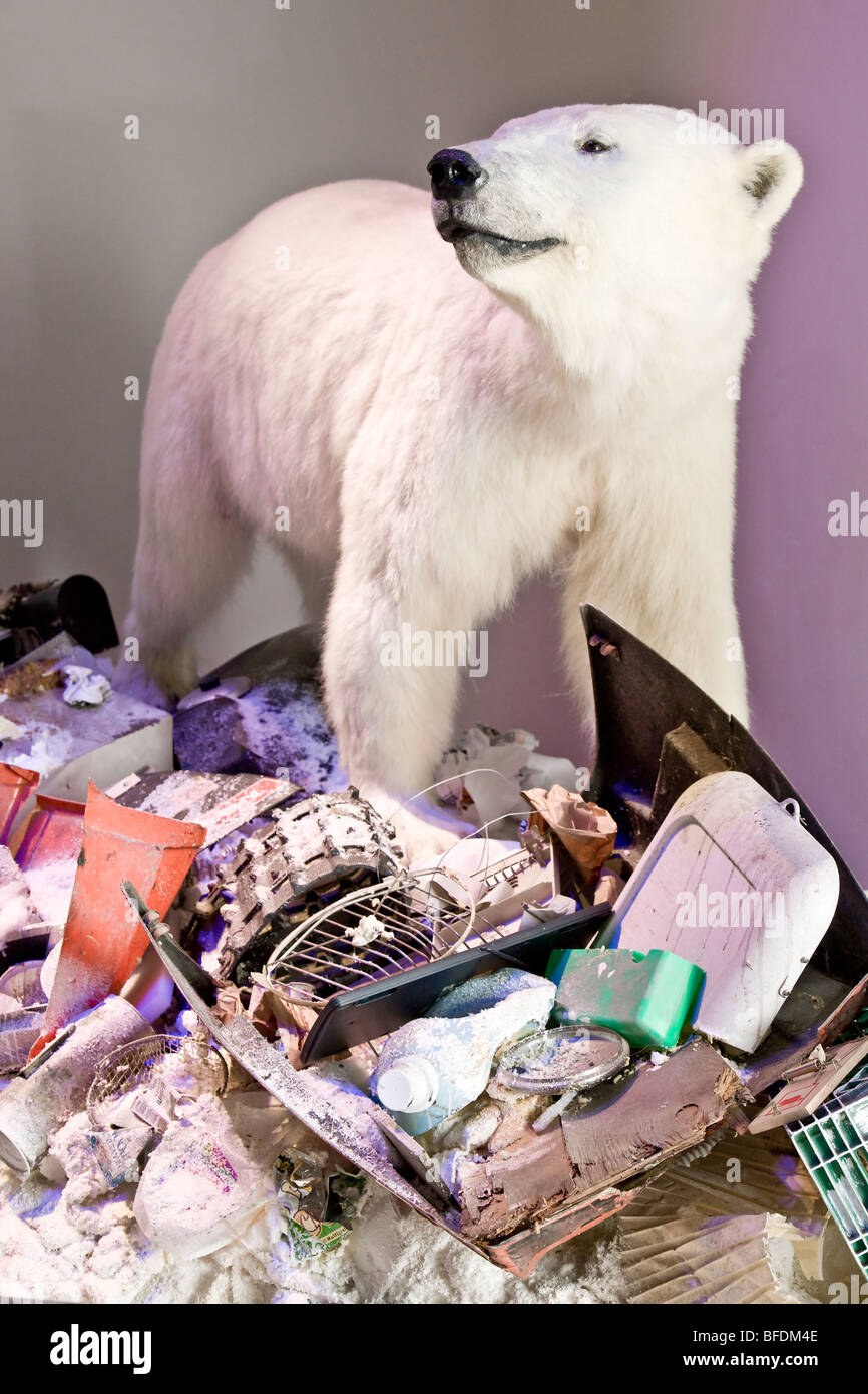 Polar bear at the landfill site - Stock Image