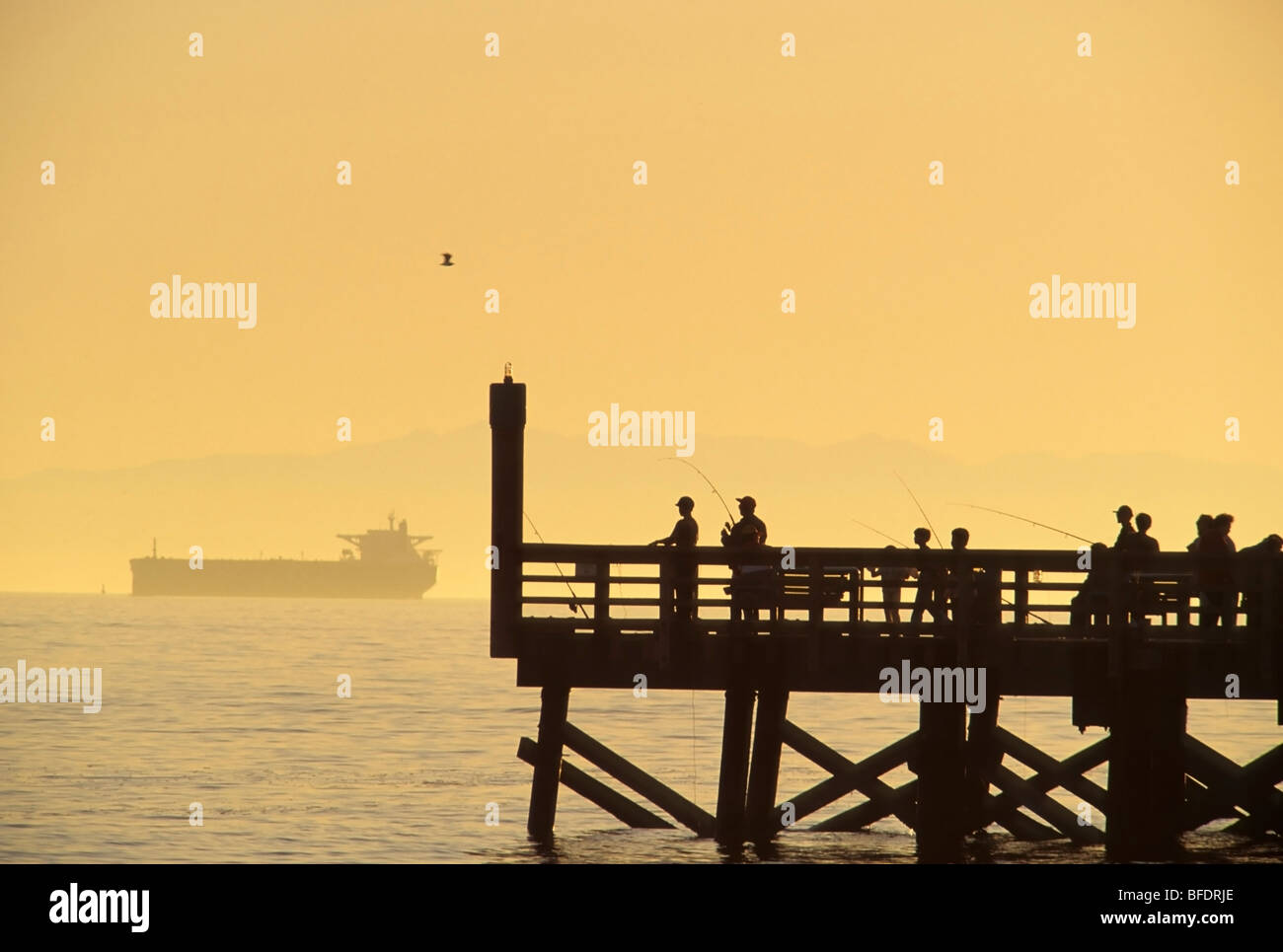 People fishing off dock by Burrard Inlet with freighter in the background, West Vancouver, British Columbia, Canada Stock Photo