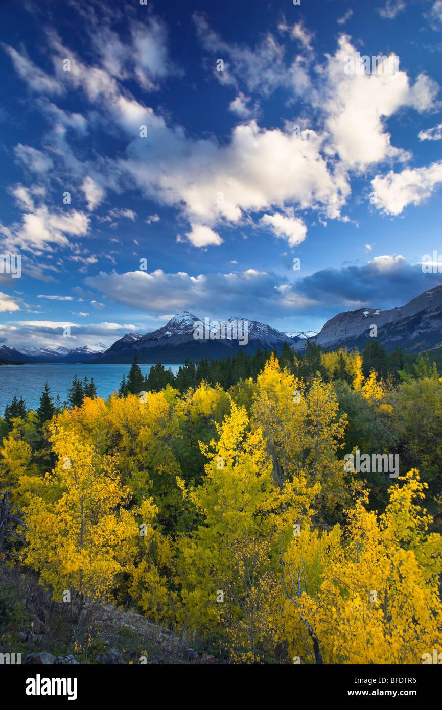 Lake Abraham and Elliot Peak, Kootenay Plains, Alberta, Canada - Stock Image