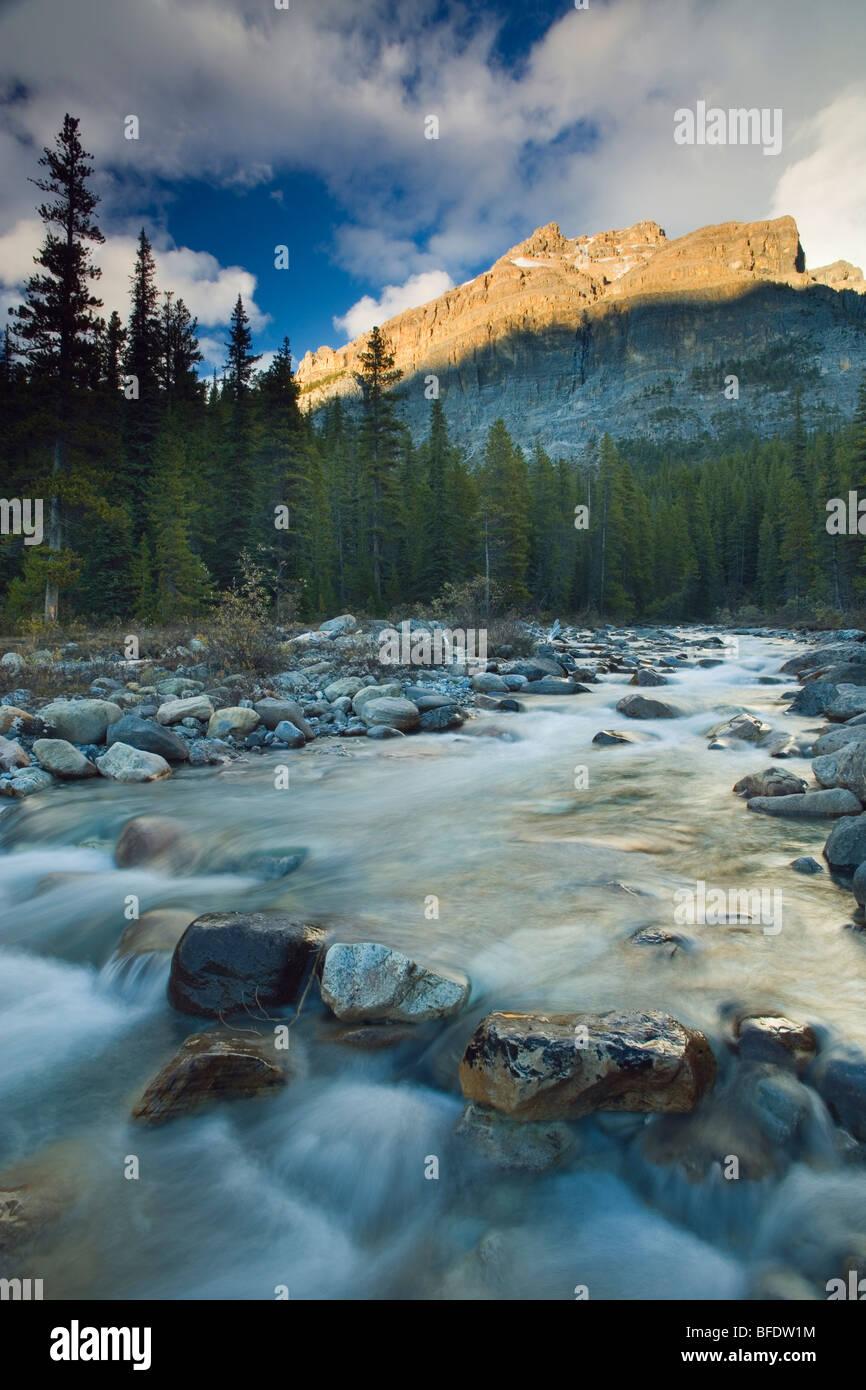 Picturesque scenic of Mosquito Creek, Banff National Park, Alberta, Canada - Stock Image