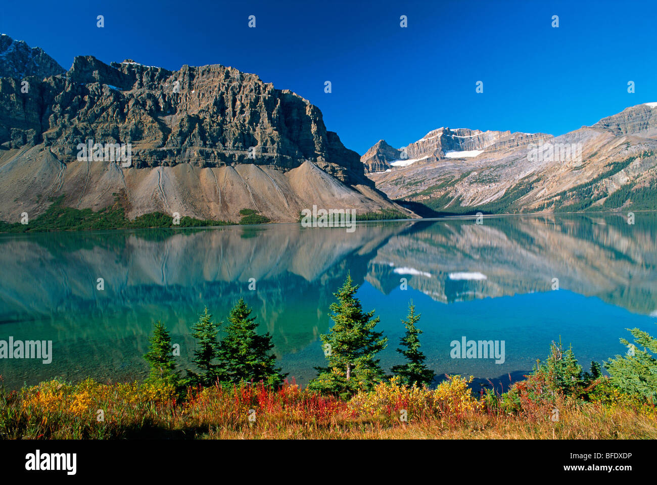 Autumn colors on Bow Lake with Crowfoot Mountain, Banff National Park, Alberta, Canada - Stock Image