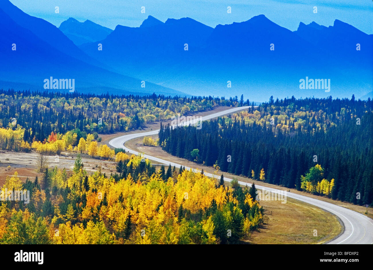 Road through the Canadian Rockies in autumn, David Thompson Highway, Alberta, Canada - Stock Image