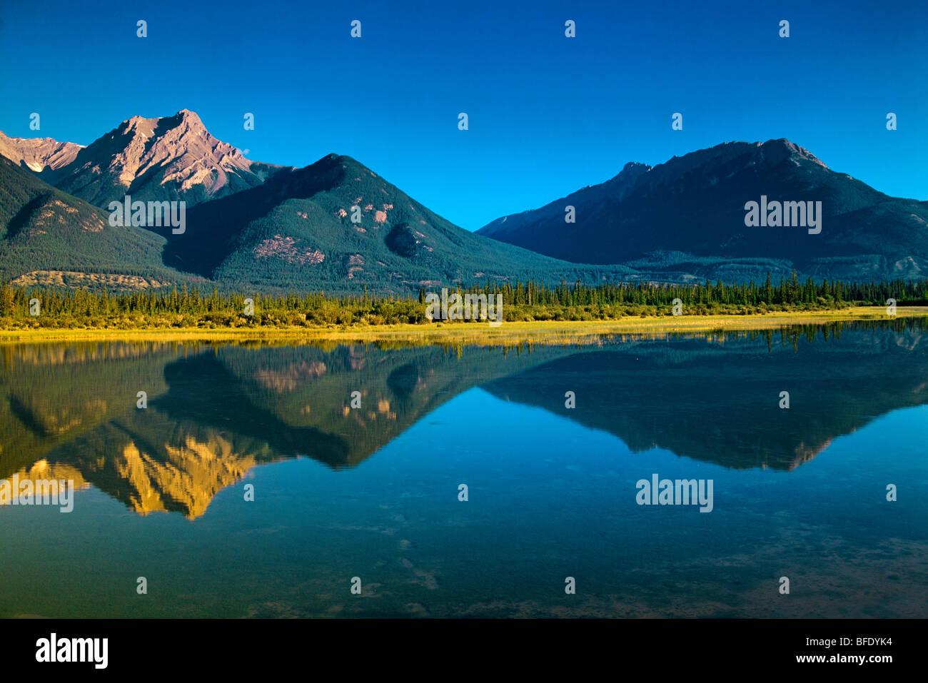 Pond near Cold Sulphur Spring, Roche de Smet at right, Jasper National Park, Alberta, Canada - Stock Image