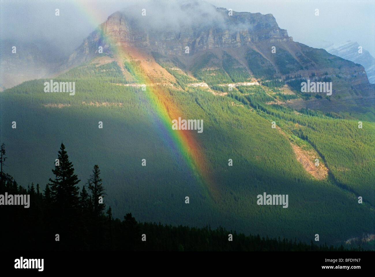 Rainbow, Icefields Parkway near Peyto Lake, Banff National Park, Alberta, Canada - Stock Image
