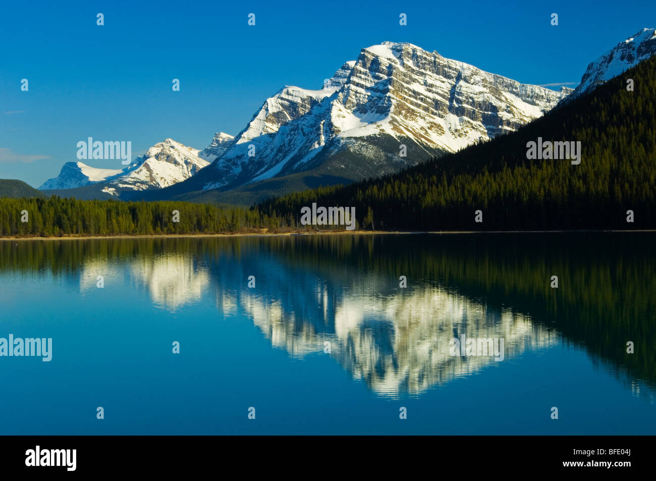 Mount Patterson, reflected in Lower Waterfowl Lake, Icefields Parkway, Banff National Park, Alberta, Canada - Stock Image