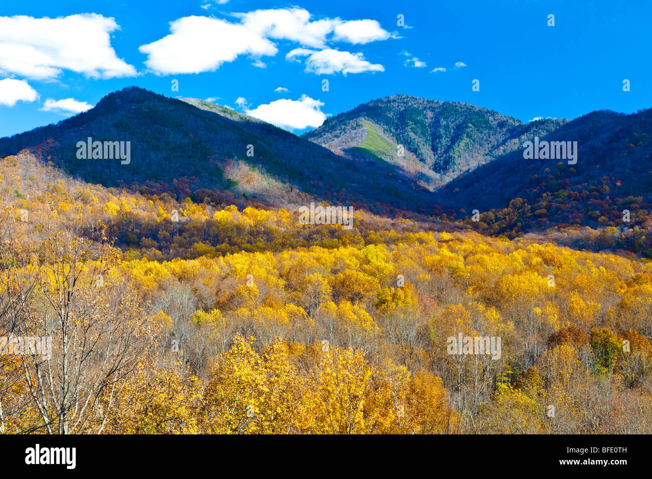 View from Newfound Gap Road, Great Smoky Mountains National Park, Tennessee - Stock Image