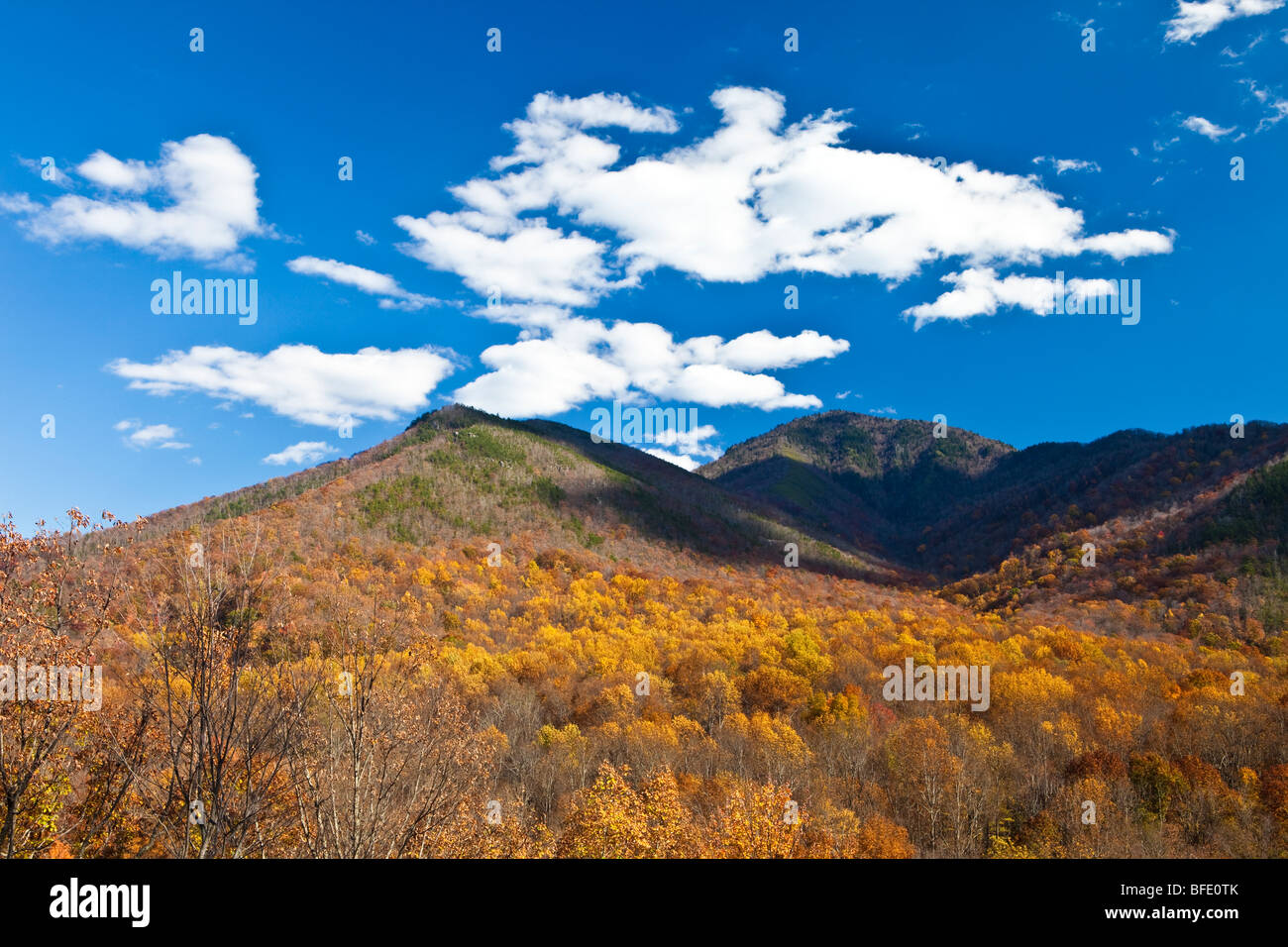 Mountains and Clouds, View from Newfound Gap Road, Great Smoky Mountains National Park, Tennessee - Stock Image