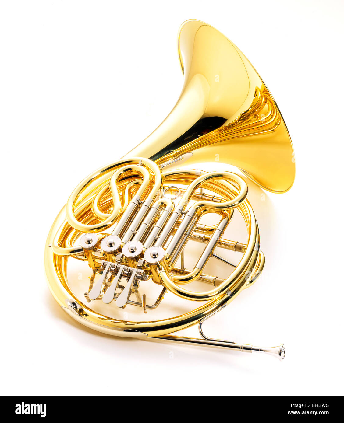 Shiny french horn on a white background - Stock Image