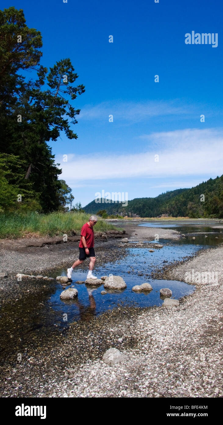 A hiker crosses a creek on the beach at Montague Harbour Provincial Marine Park on Galiano Island, British Columbia, - Stock Image