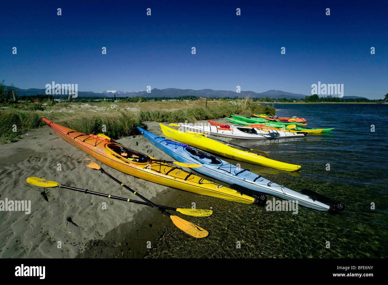 Bright and colorful kayaks hauled up in the Comox Bay, Comox Valley, Vancouver Island, British Columbia, Canada - Stock Image