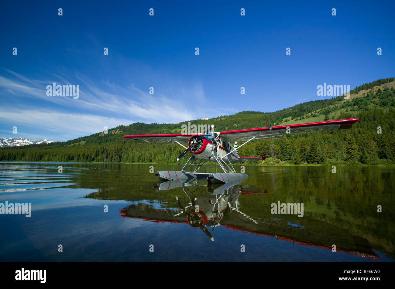 The venerable Beaver floatplane,, Spruce Lake, Southern Chilcotin Mountains, British Columbia, Canada - Stock Image