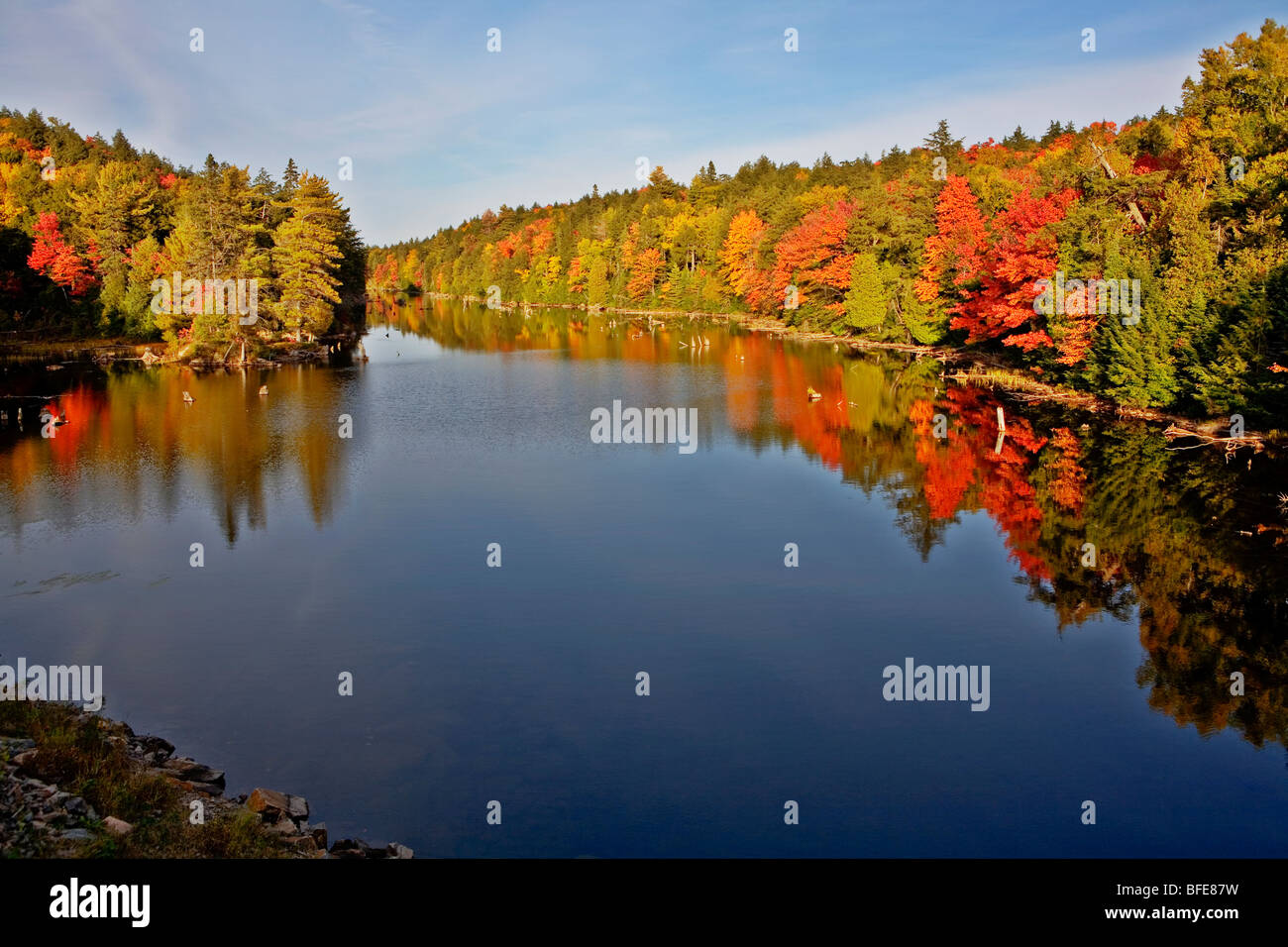 Water reflections in lake in Algonquin Park in fall, Ontario, Canada - Stock Image