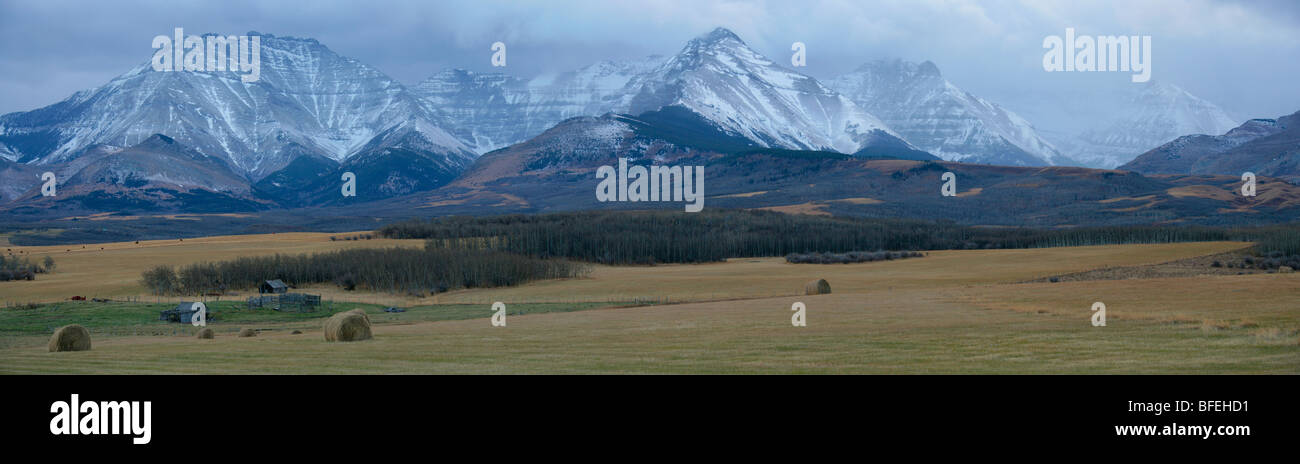 Panoramic view of old farmstead outside of Waterton Lakes National Park, Alberta, Canada - Stock Image
