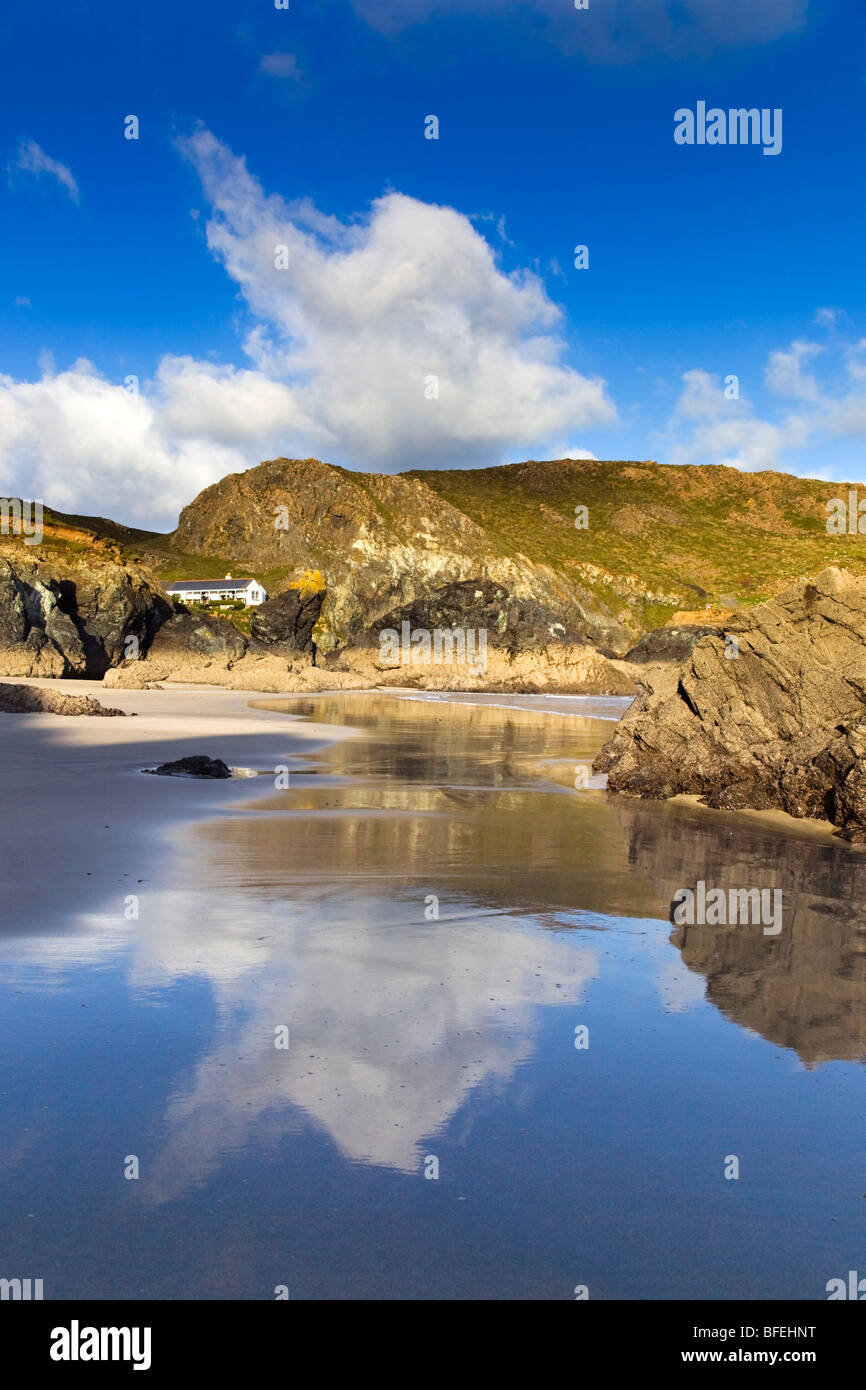 Kynance cove; reflections on the wet sand; Cornwall - Stock Image