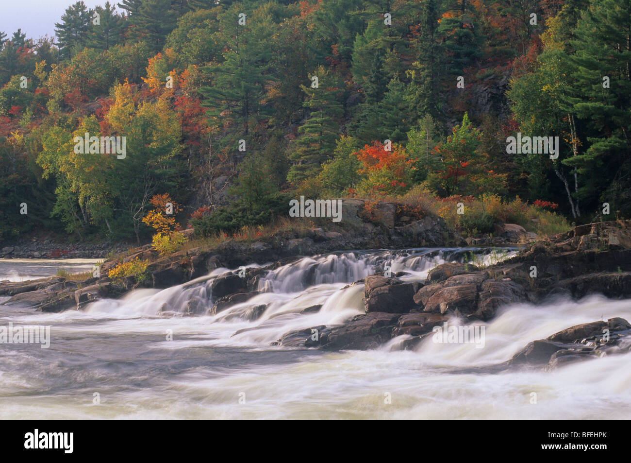 Autumn scenic, Recollect Falls, French River, south of Sudbury, Ontario, Canada - Stock Image