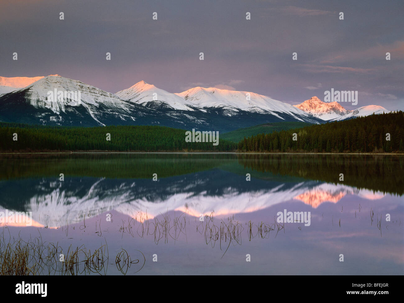 Patricia Lake and the Trident Range, Jasper National Park, Alberta, Canada - Stock Image