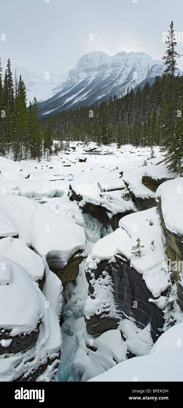 Mistaya River and Mistaya Canyon in winter, Banff National Park, Alberta, Canada - Stock Image