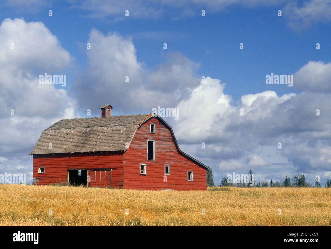old barn near devon alberta canada stock photo 26752881 alamy