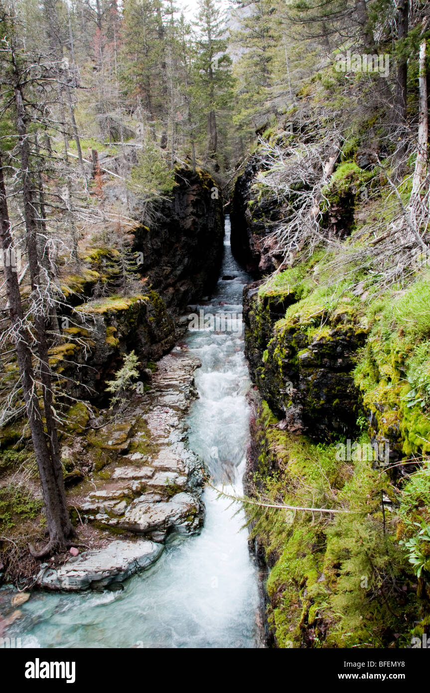 Glacier National Park runoff.  Annual springtime thaw runoff creates these carved rock formations. - Stock Image