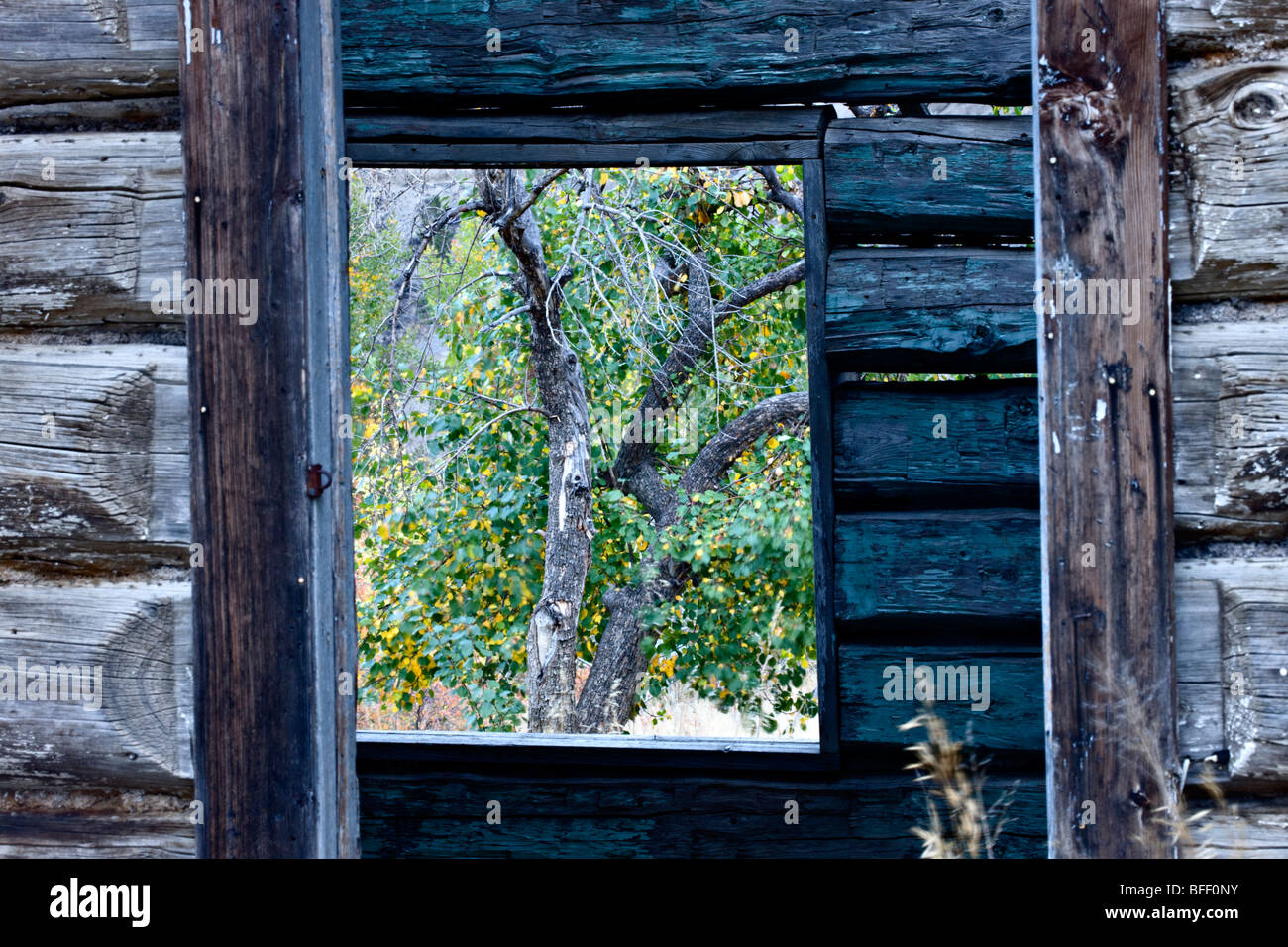 Abandoned log ranch house at Farwell Canyon British Columbia Canada - Stock Image