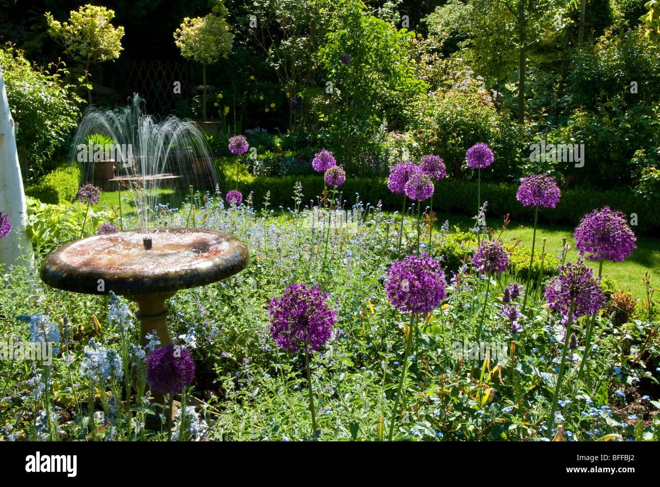 An English country garden - Stock Image