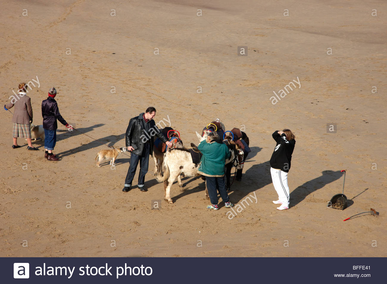 Whitby, Children's Donkey Rides on the Beach Stock Photo