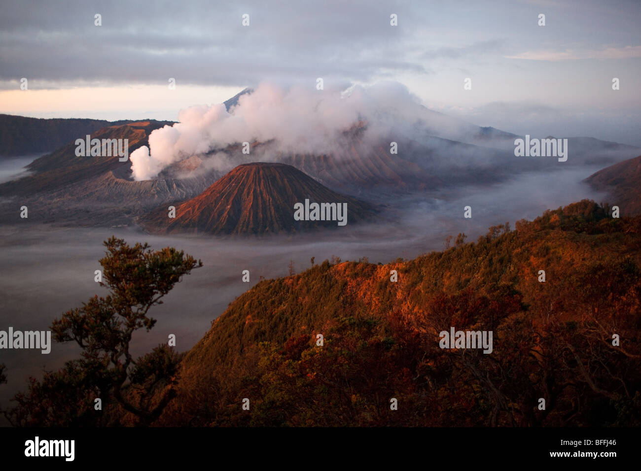 Mount Bromo and other volcanoes seen from Mount Penanjakan, Java island, Indonesia - Stock Image