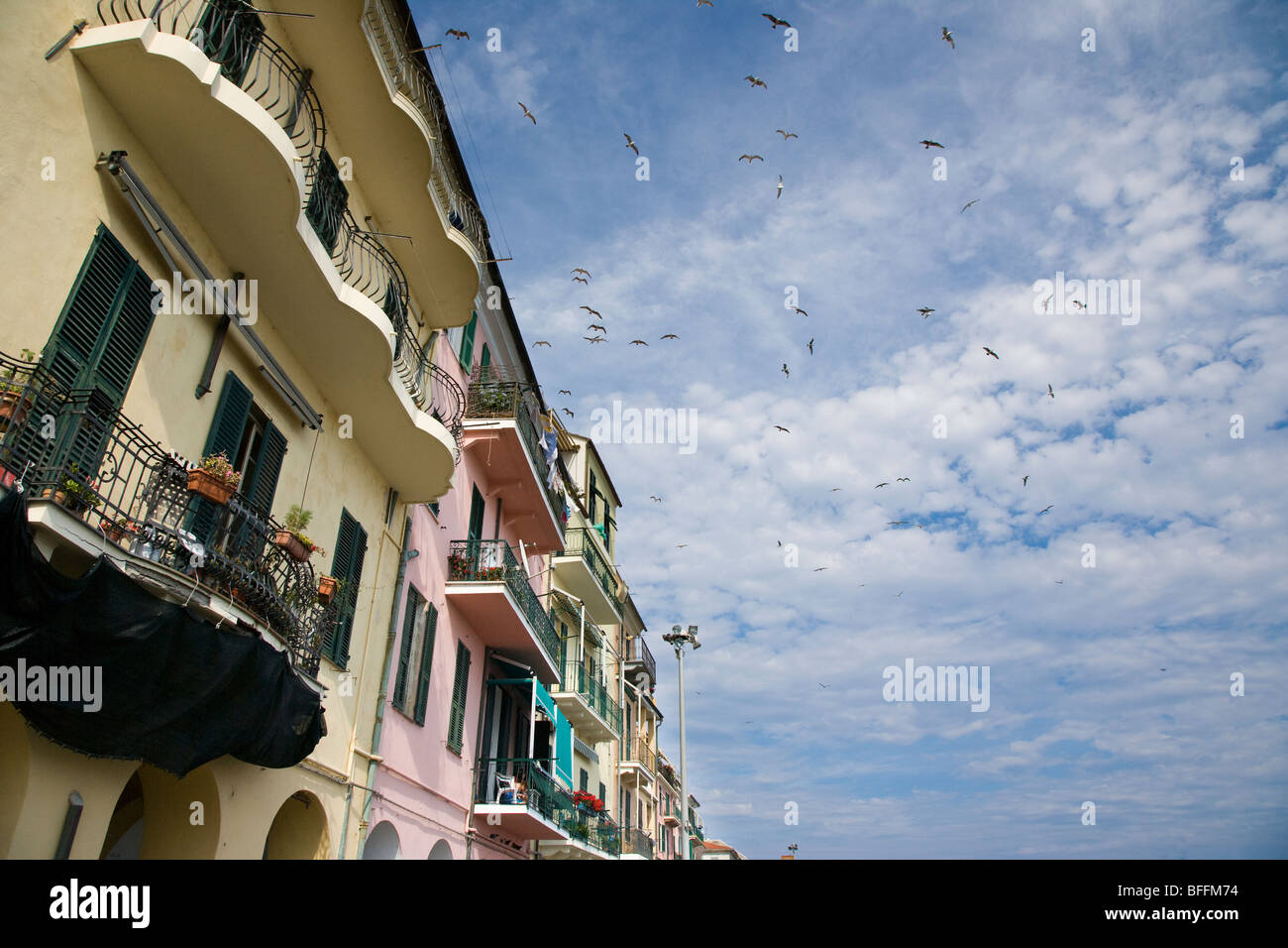 Waterfront building and birds, Imperia, liguria, Italy - Stock Image