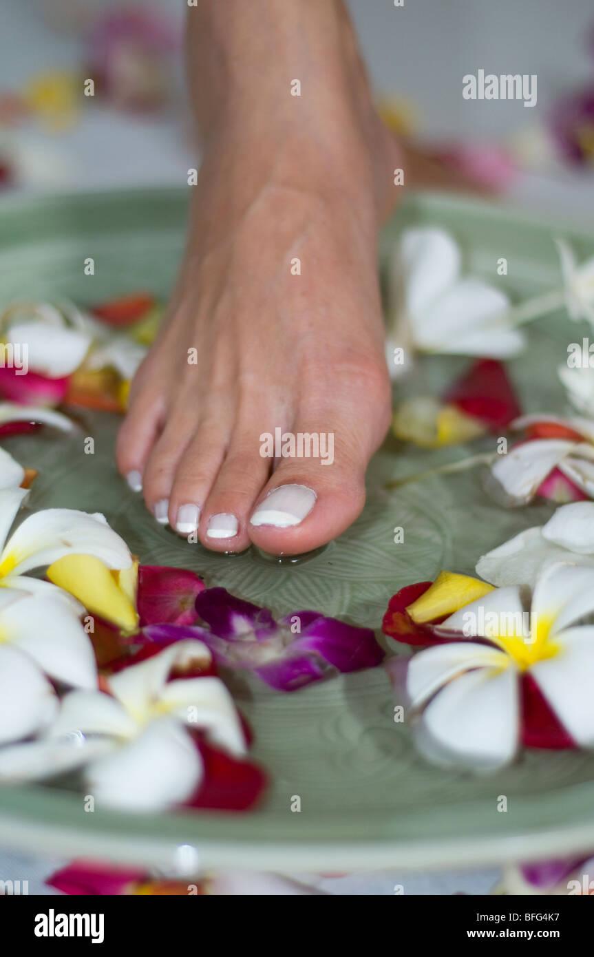 Lotus Feet Stock Photos Lotus Feet Stock Images Page 2 Alamy