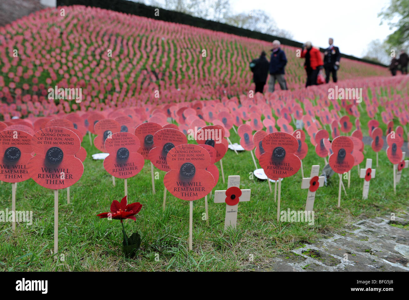 Thousands of paper poppies on Remembrance Day at Ypres now called Leper in Flanders Belgium - Stock Image