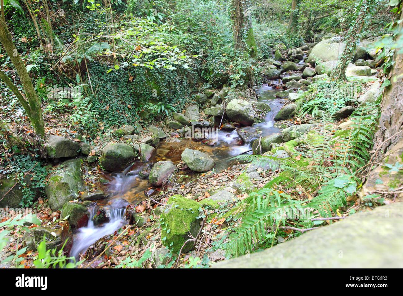Spain, Cataluna, Catalonia, Catalunya, Costa Brava, hiking nature landscape mountains - Stock Image
