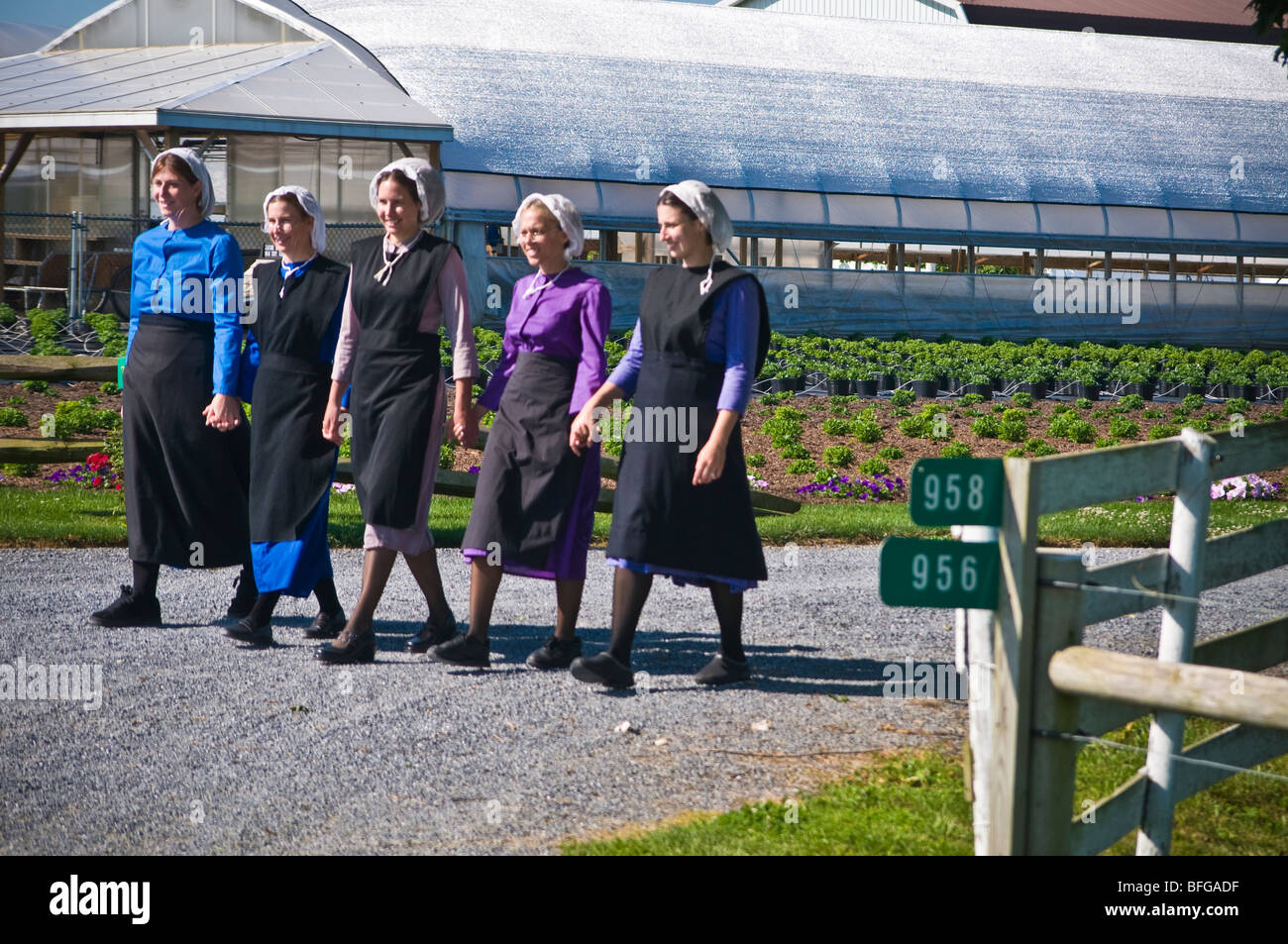 Amish women topless 7