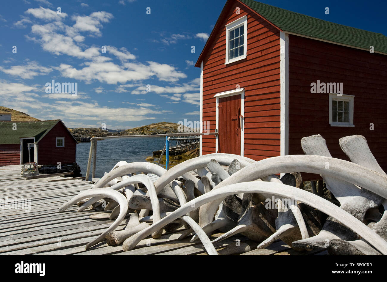 whale bones stacked on stage, Change Islands, Newfoundland & Labrador, Canada - Stock Image