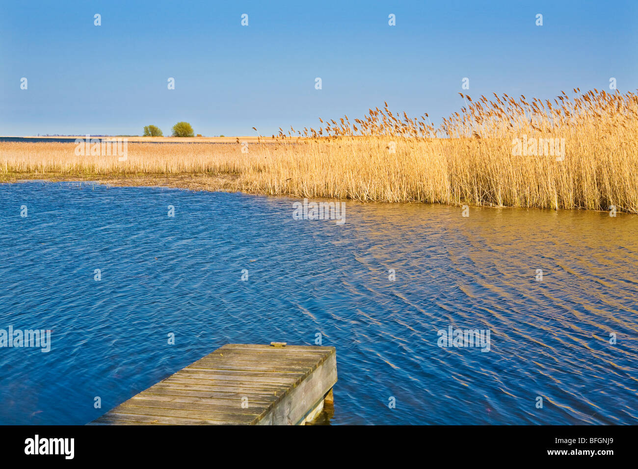 Lake Erie, Longpoint Provincial Park, Ontario, Canada - Stock Image