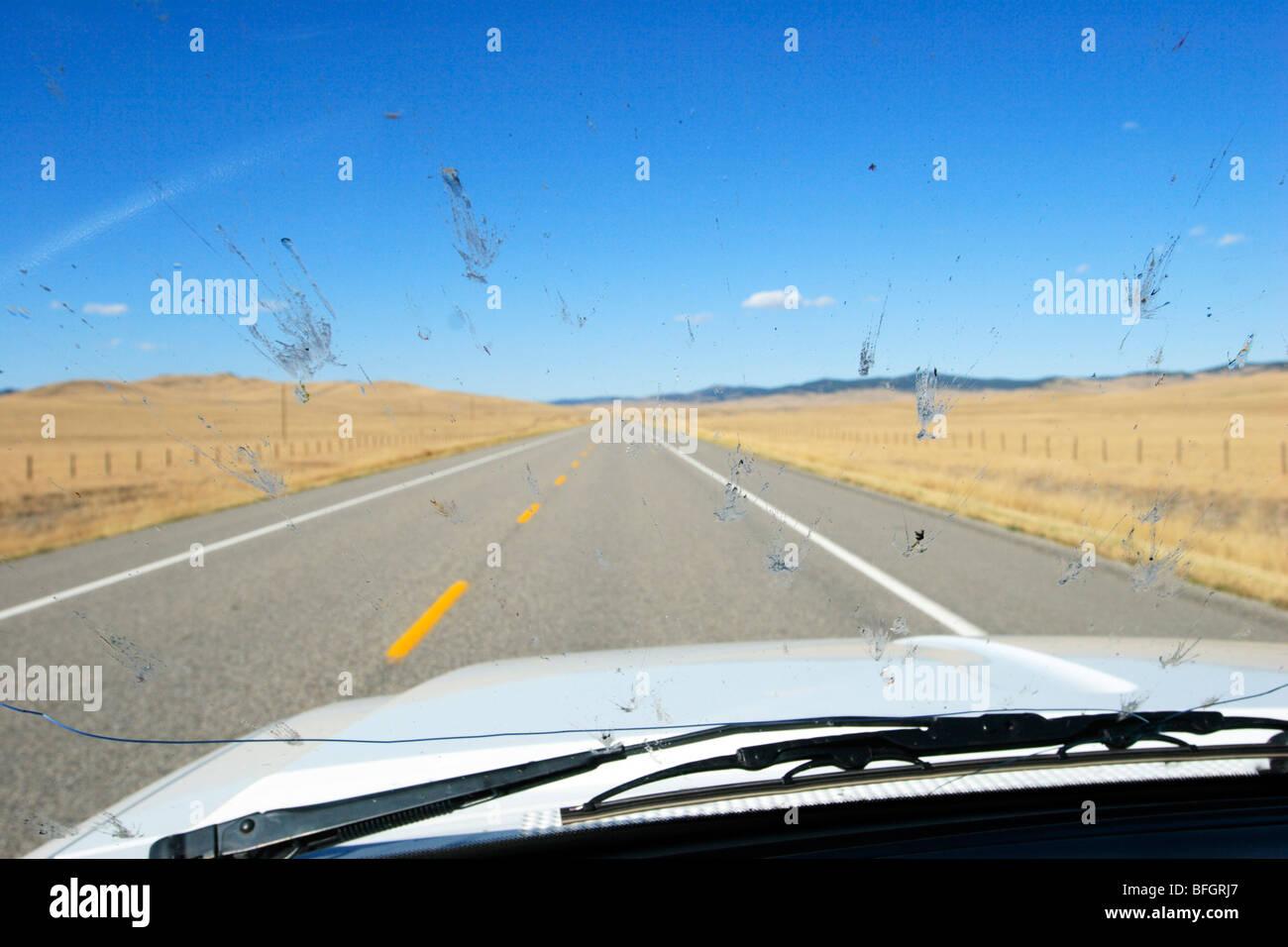 Bug splatter on vehicle windshield driving on  highway 22, near Pincher Creek, Alberta, Canada. - Stock Image