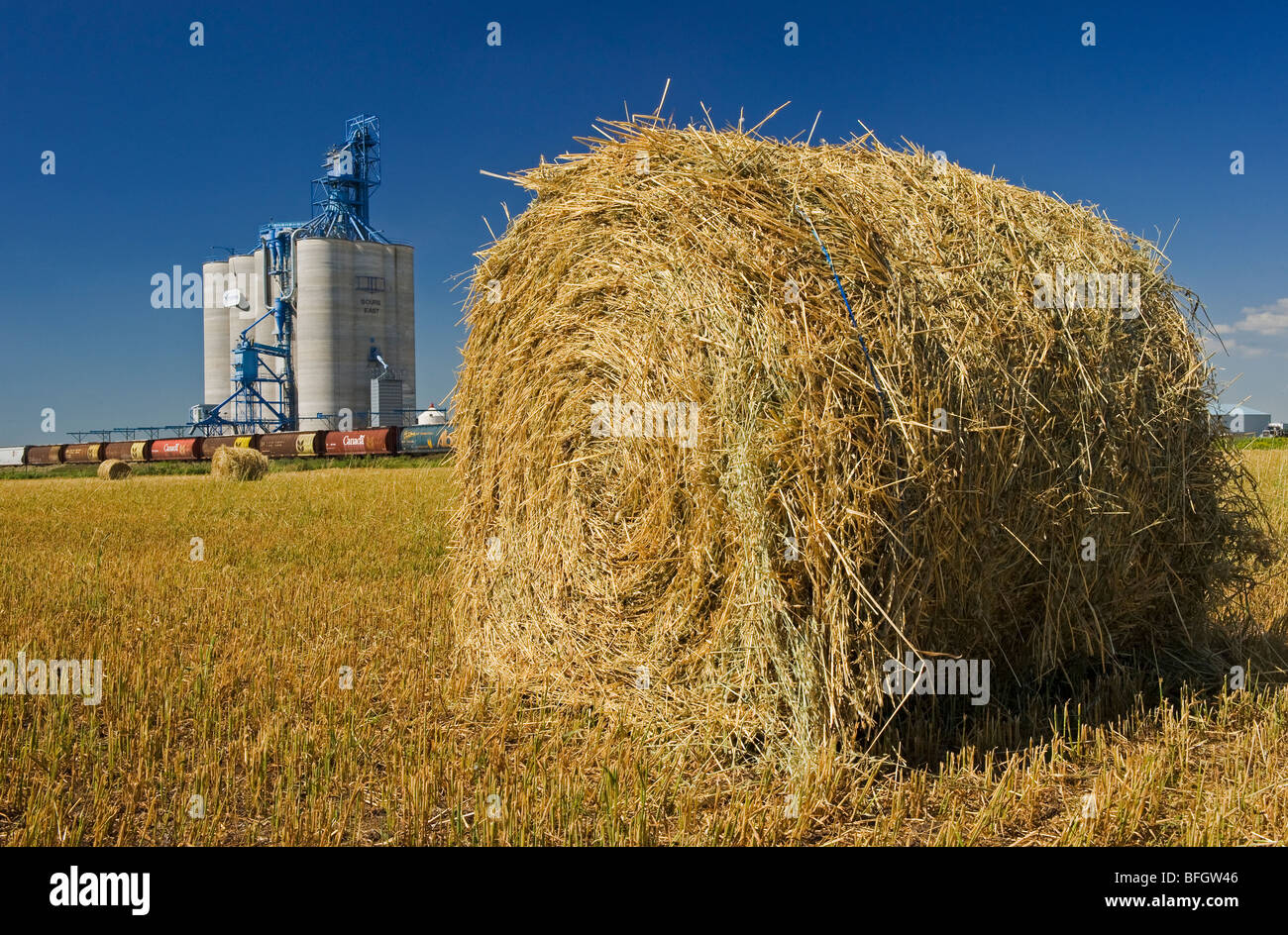 Inland grain terminal and oat roll near Souris, Manitoba, Canada - Stock Image
