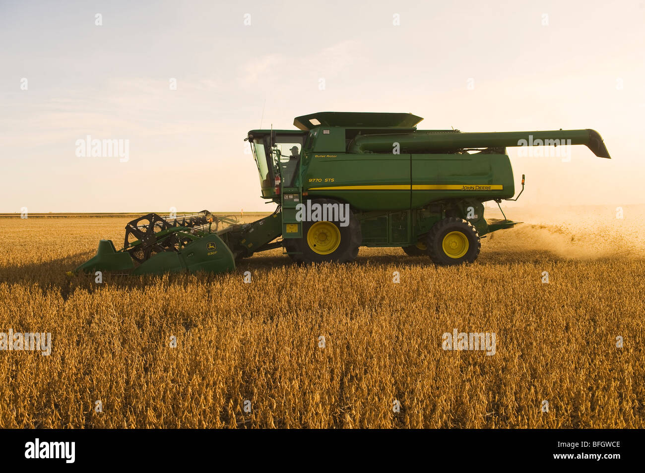 Combine harvester on soybean field in the early evening. Near La Salle, Manitoba, Canada - Stock Image