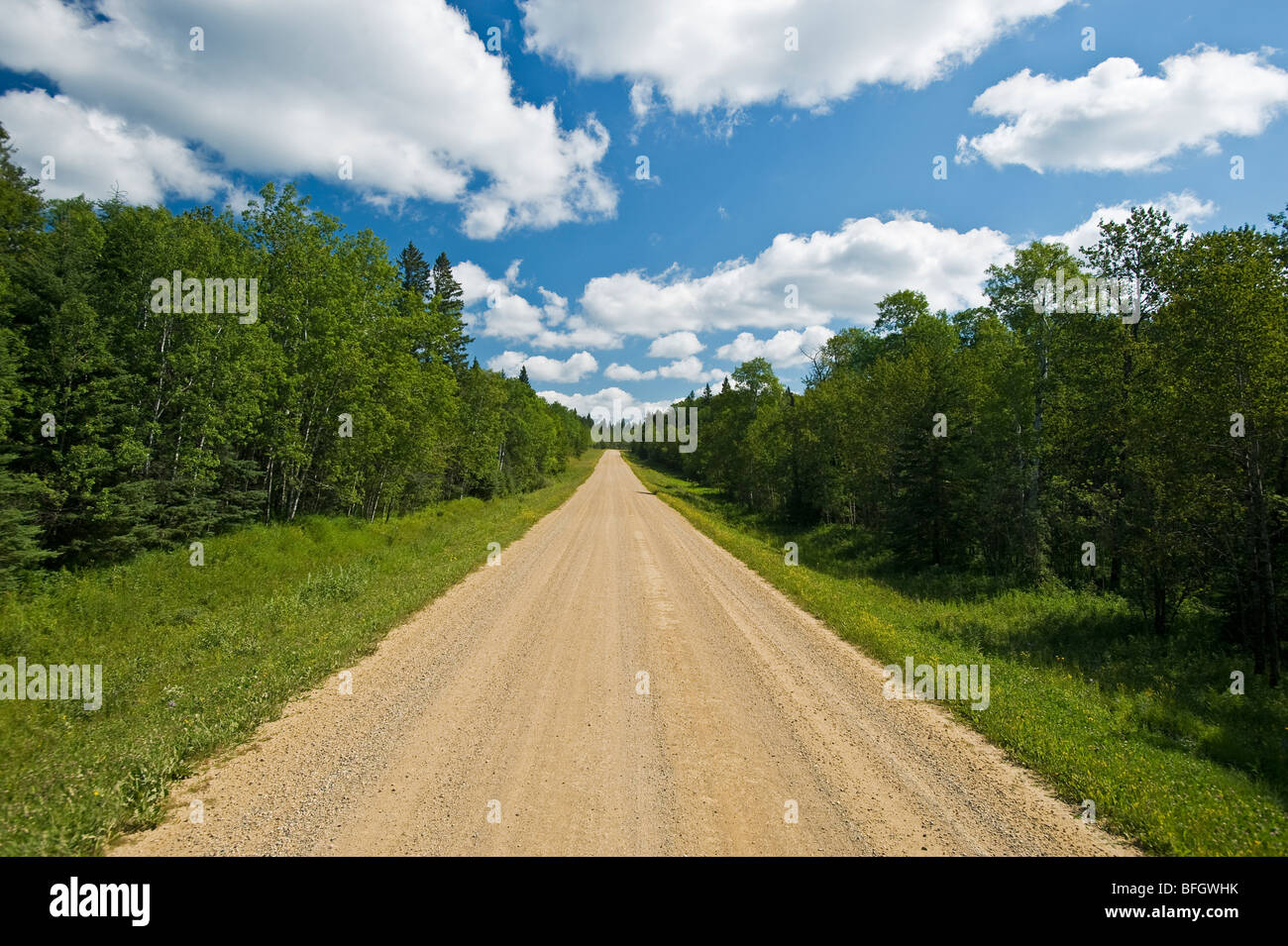 Country road through boreal forest. Duck Mountain Provincial Park, Manitoba, Canada - Stock Image