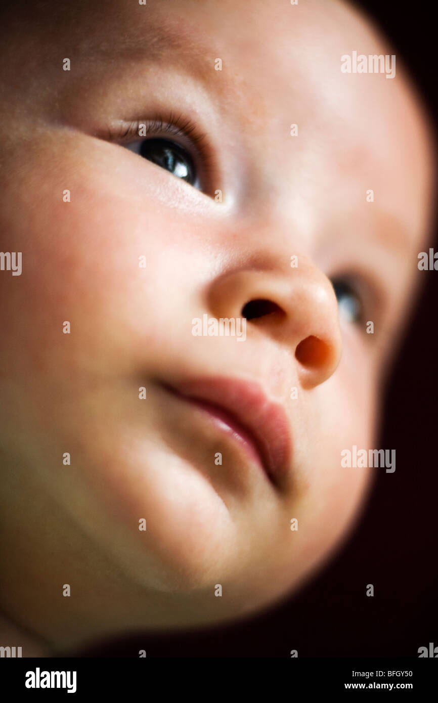 close up of a 2 months old eurasian baby boy - Stock Image