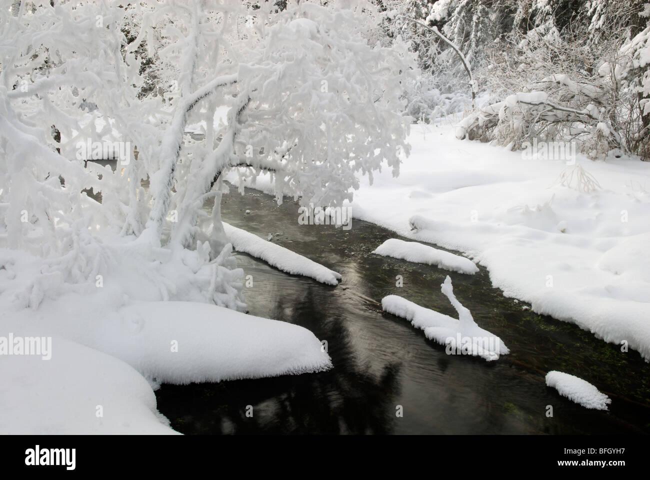 Big Hill Springs Provincial Park, Alberta, Canada - Stock Image