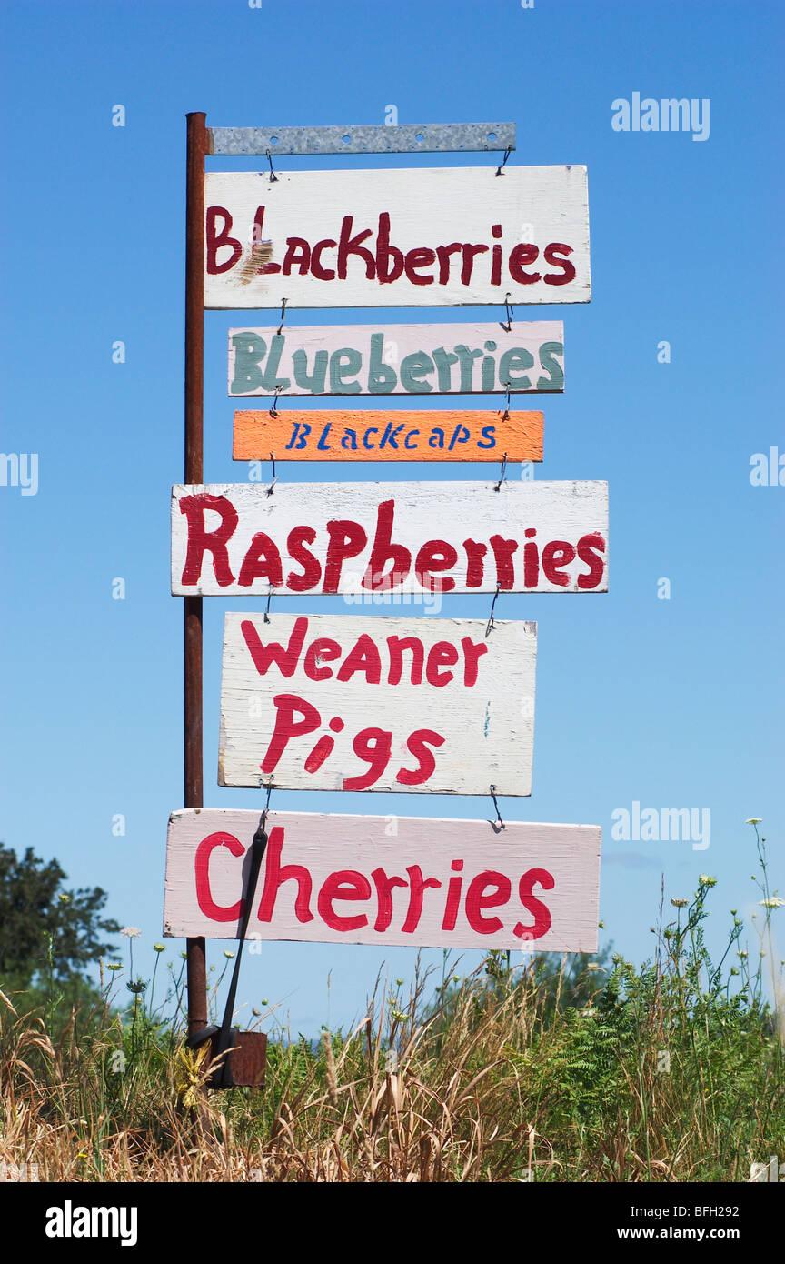 Duyck's Peachy-Pig Farm & Produce Stand sign; rural Washington County near Farmington, Willamette Valley, - Stock Image
