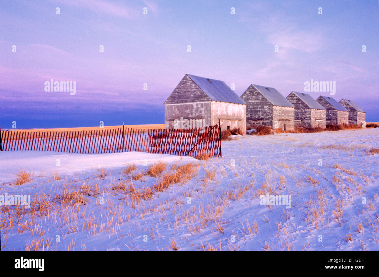 Barns on a snowcapped landscape. Beseker, Alberta, Canada - Stock Image
