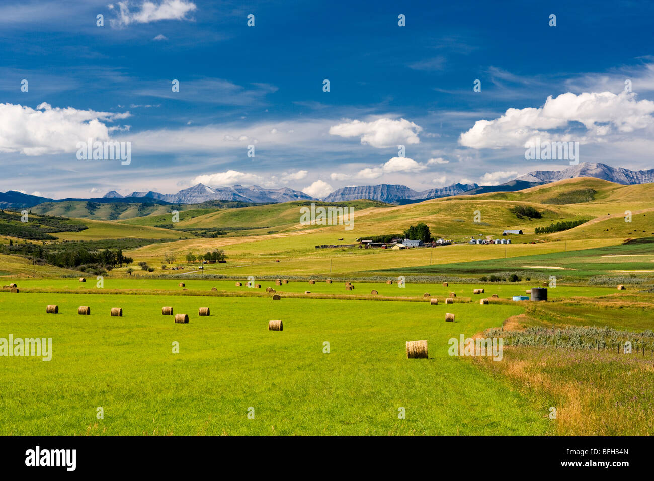 Farm and rolling hills, Longview, Alberta, Canada - Stock Image