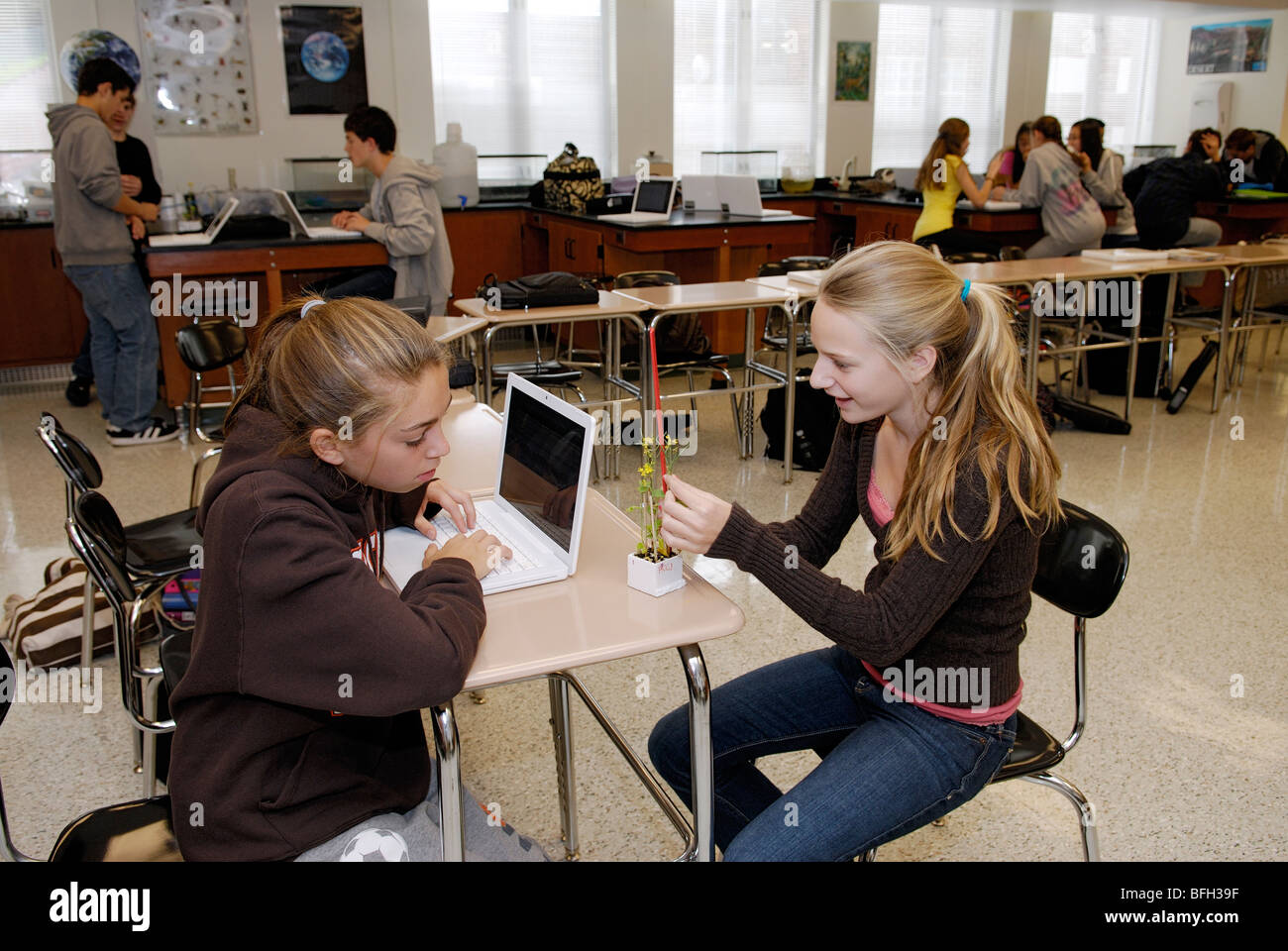 High school students collecting data on a plant experiment, learning science in classroom - Stock Image