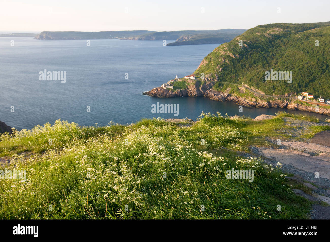 View from Signal Hill, National Historic Site. St. John's, Newfoundland, Canada Stock Photo