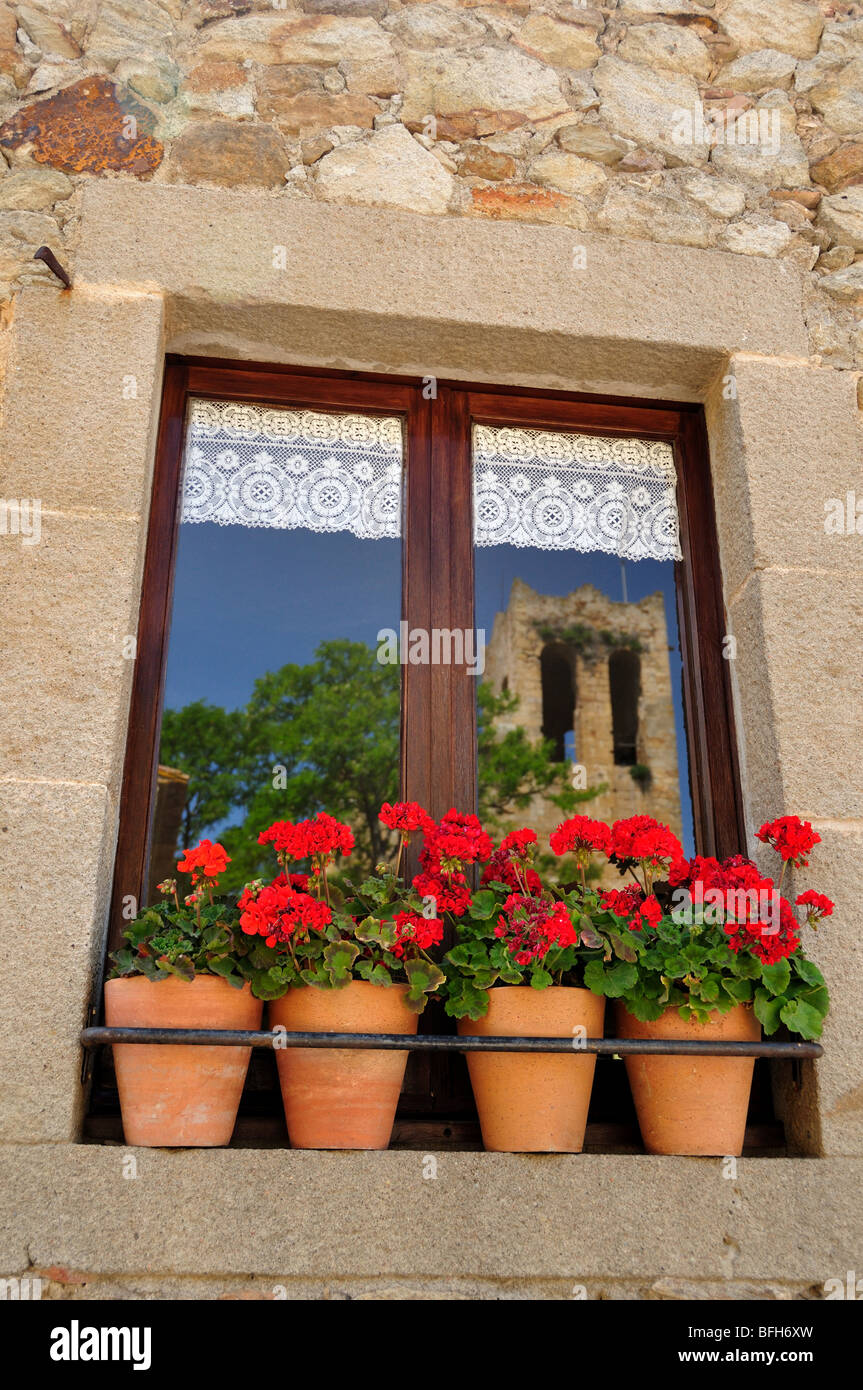 Red geraniums in a window with reflection of a gothic church - Stock Image