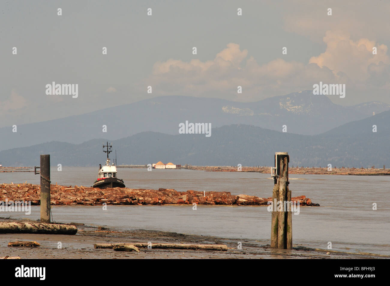 tug boat moored to log boom on north arm of Fraser River. Iona Beach with view of Coast Range, Richmond, British - Stock Image