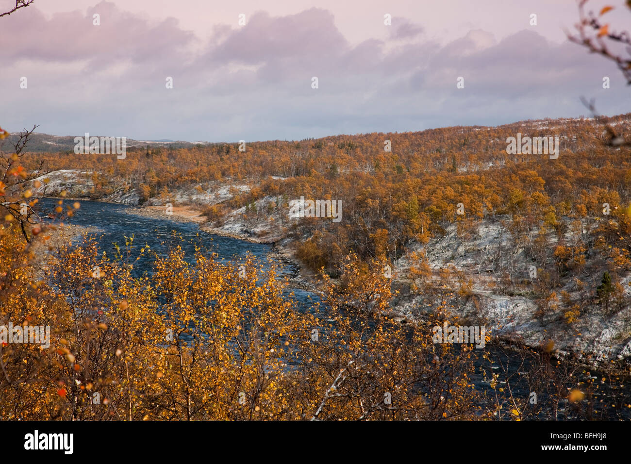 Sweden Jämtland Storulvån fjell seasons autumn fall winter snow first snow birch forest winter snow river - Stock Image