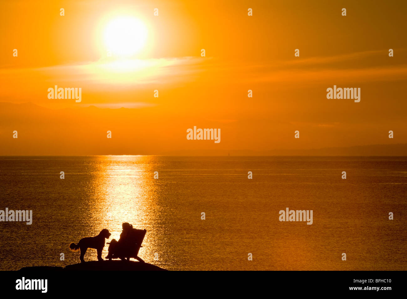 A woman and her dog are silhouetted by the sunset on an oceanside rock off Beach Drive, Victoria BC. - Stock Image
